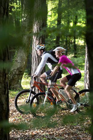 Radfahrer-im-Wald-Bildrecht-Helmuth-Rier