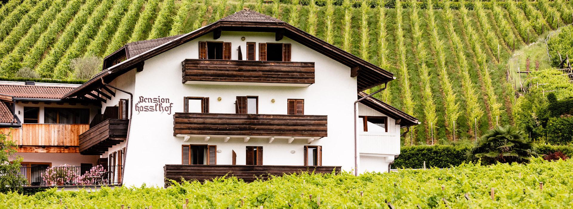 Stammhaus Pension Hasslhof: Ihr Weinhotel Südtirol mitten in den Weinbergen Kalterns