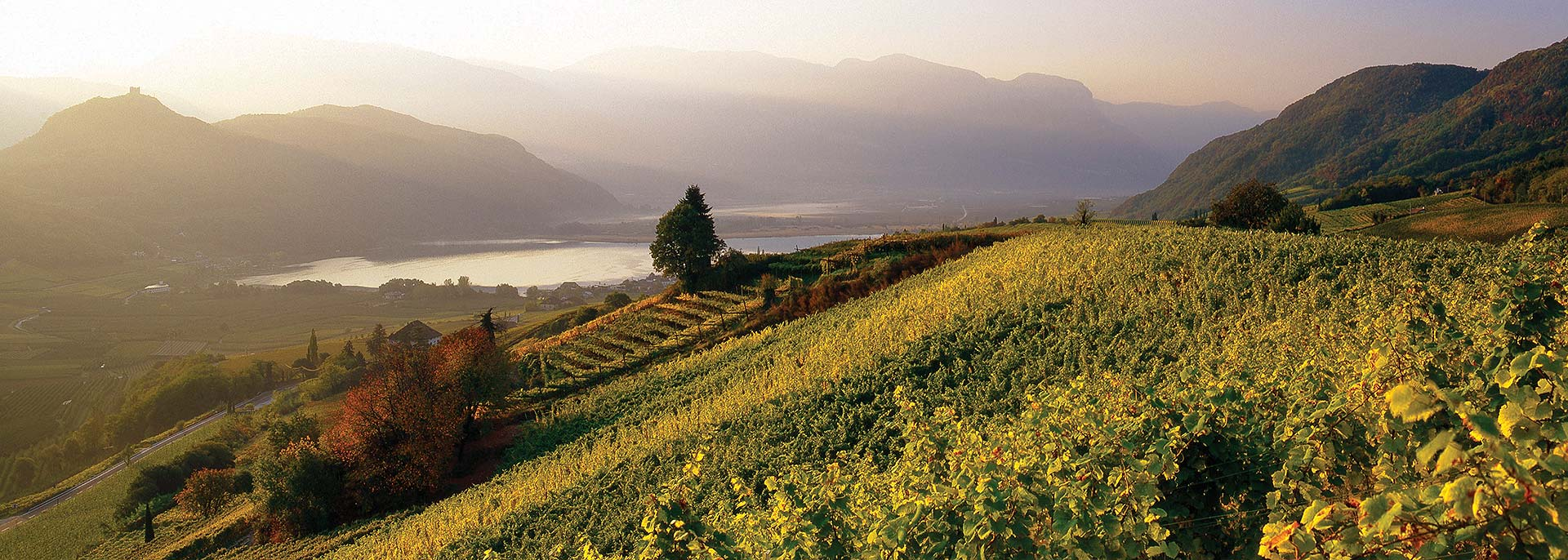 Weinhotel Südtirol - Hotel Panorama auf den Kalterer See