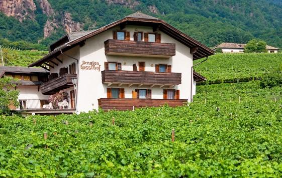 Pension Hasslhof mitten im Weinberg am Kalterer See